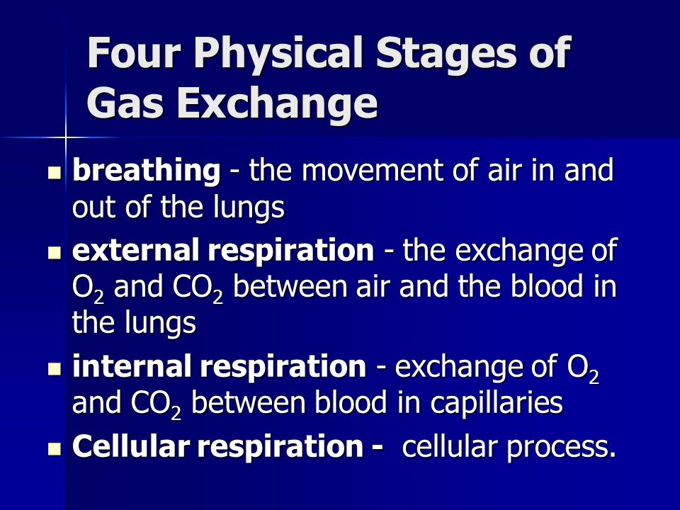 Four Physical Stages of Gas Exchange