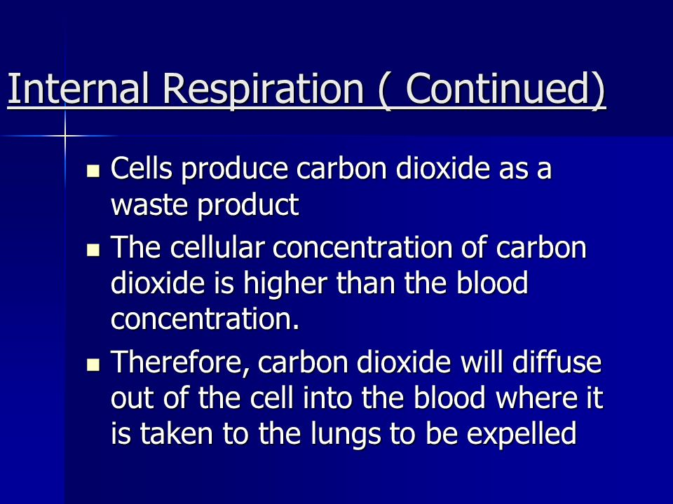 Internal Respiration ( Continued)