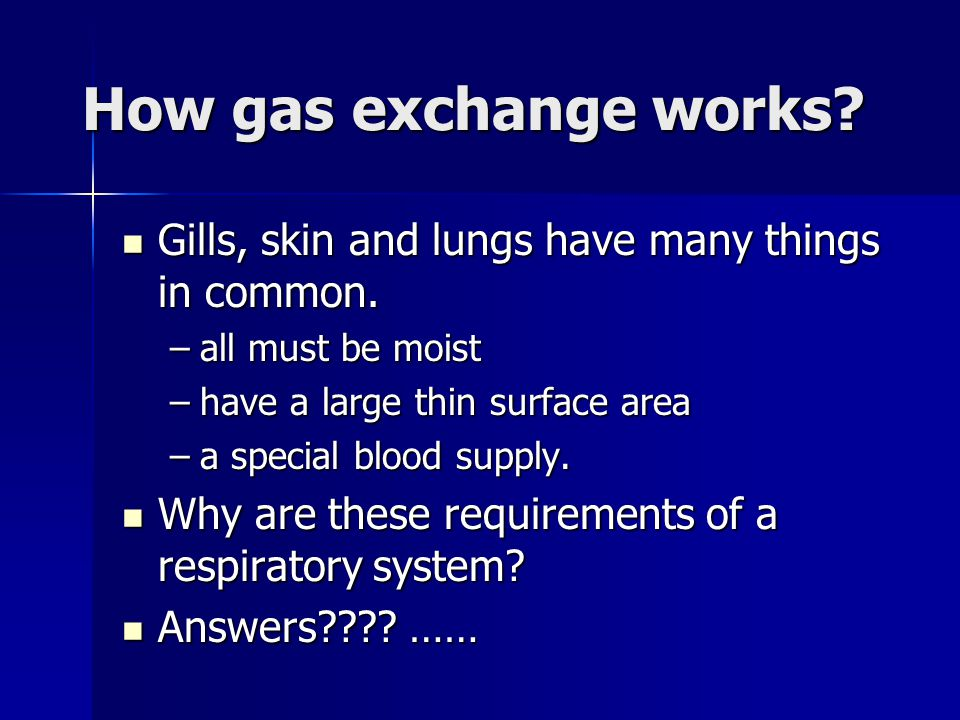 How gas exchange works Gills, skin and lungs have many things in common. all must be moist. have a large thin surface area.
