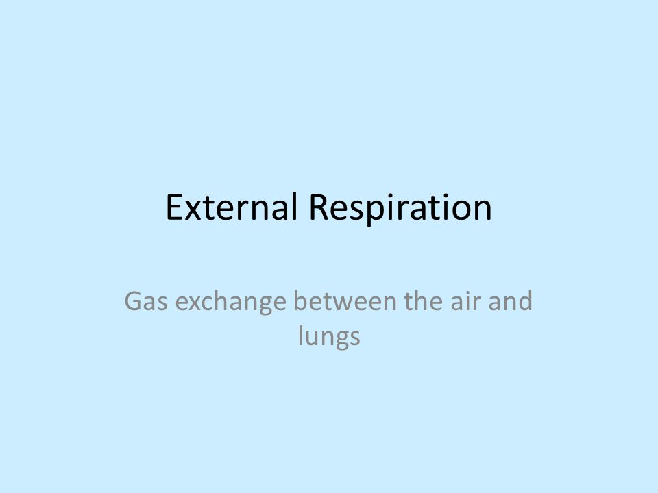 Gas exchange between the air and lungs