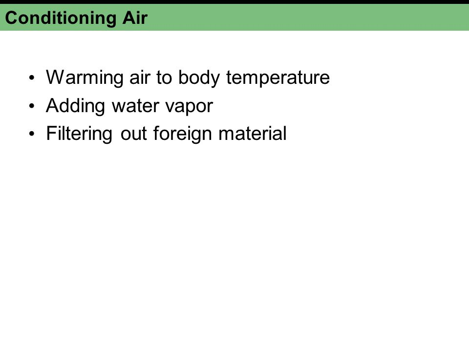 Warming air to body temperature Adding water vapor