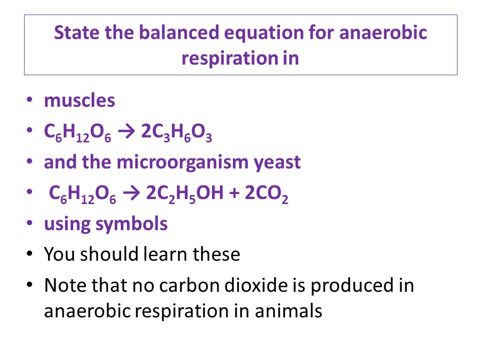 write a word equation for aerobic respiration