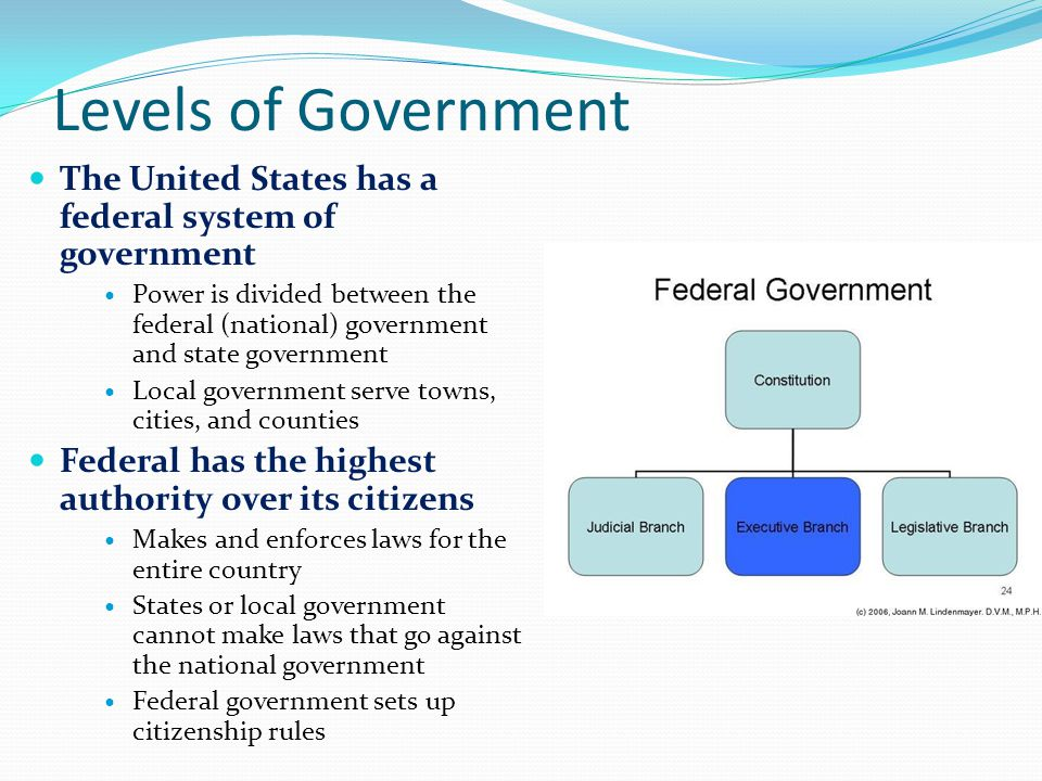 examples of us federal government authority expansion essay Identify and describe four (4) examples of us federal government expansion of authority between the beginning of the us civil war and the end of the civil right era these examples must be placed in the context of the importance of the following developments in the united states: political structures social structures economic structures.