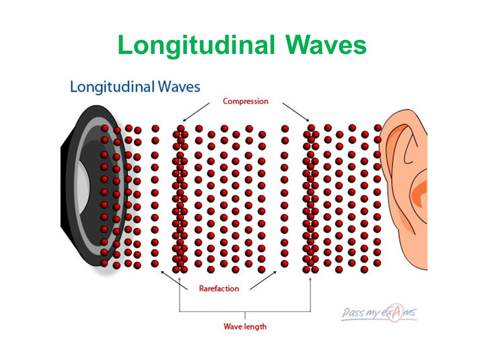Longitudinal Waves