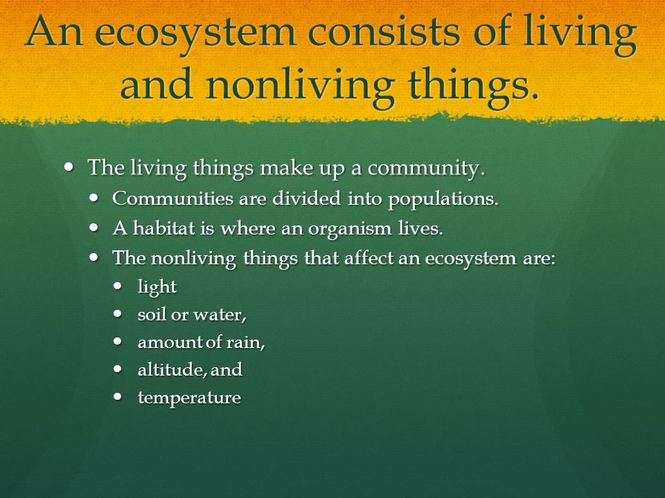 An ecosystem consists of living and nonliving things.