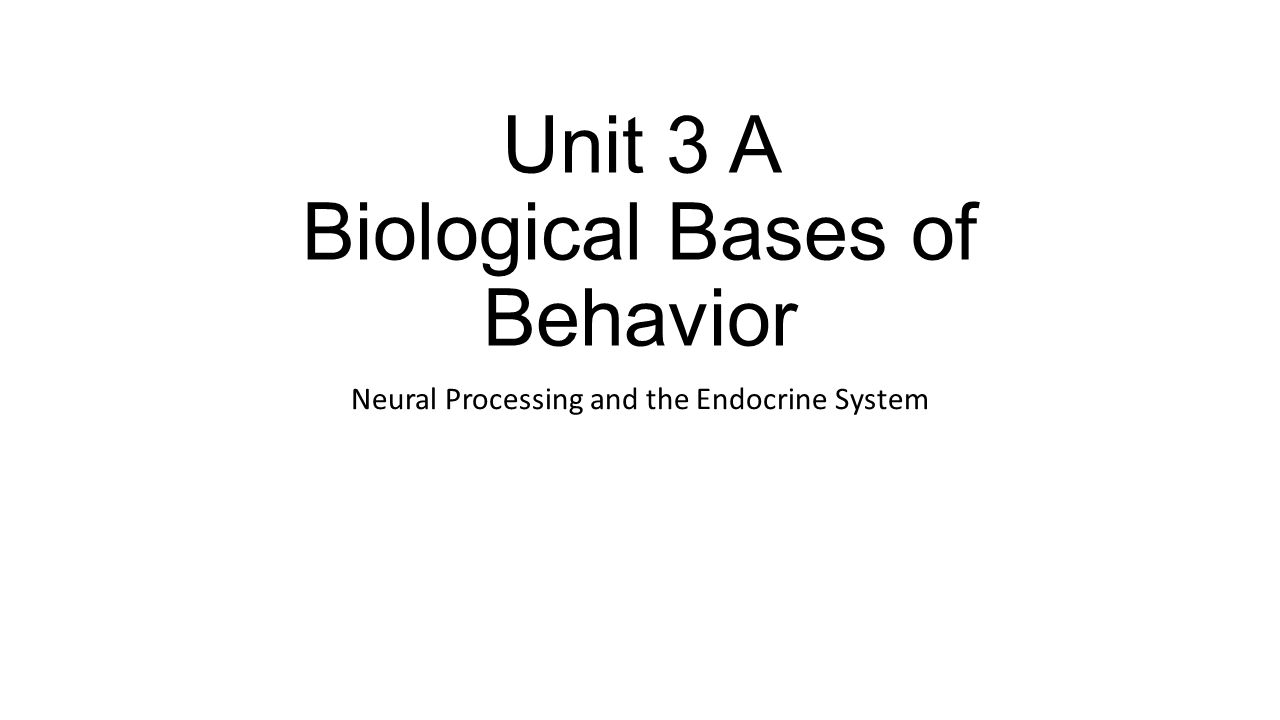 Unit 3 A Biological Bases of Behavior