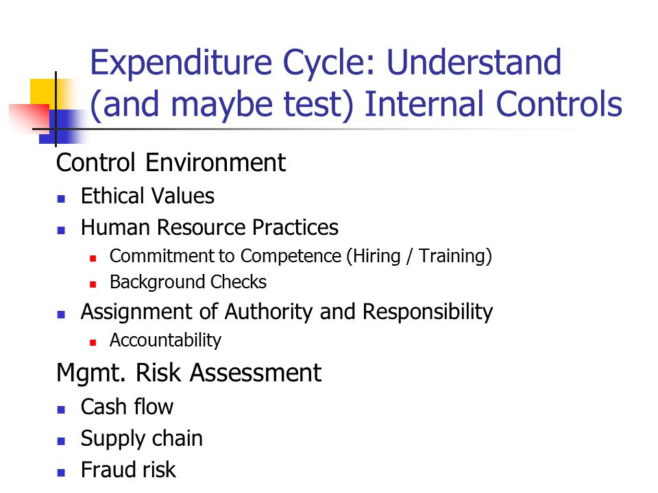 Expenditure Cycle: Understand (and maybe test) Internal Controls