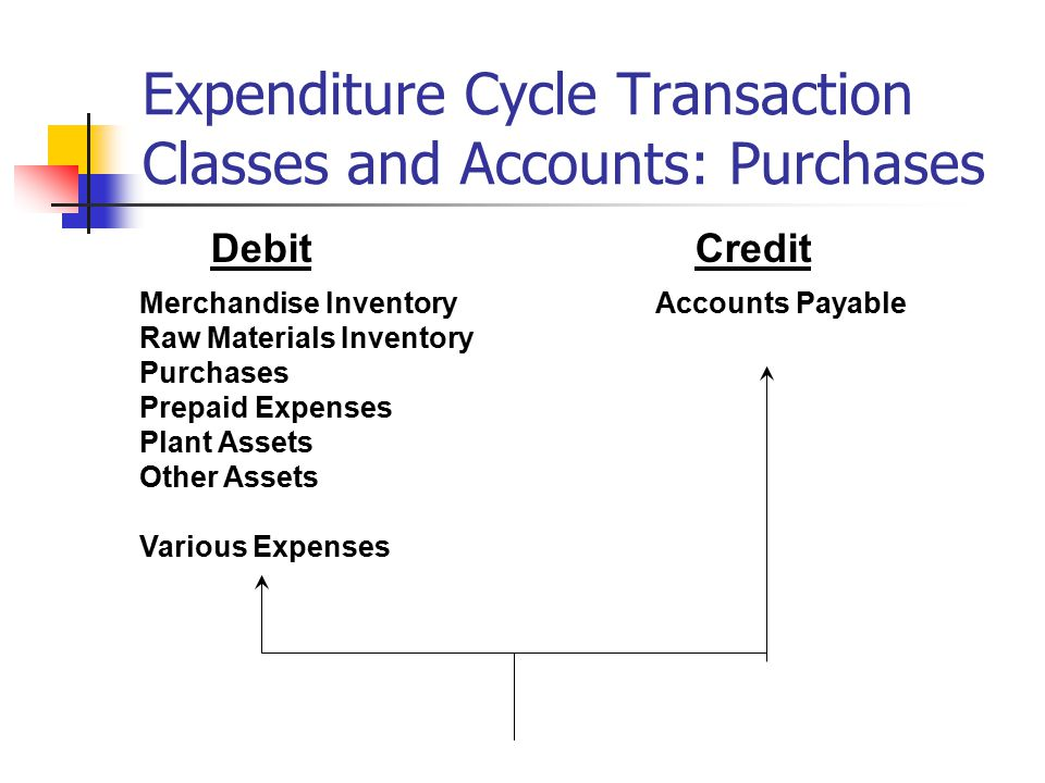 Expenditure Cycle Transaction Classes and Accounts: Purchases