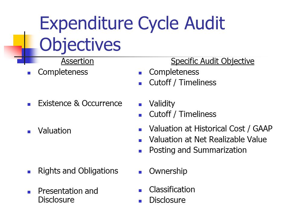 Expenditure Cycle Audit Objectives