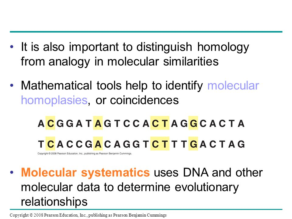 It is also important to distinguish homology from analogy in molecular similarities