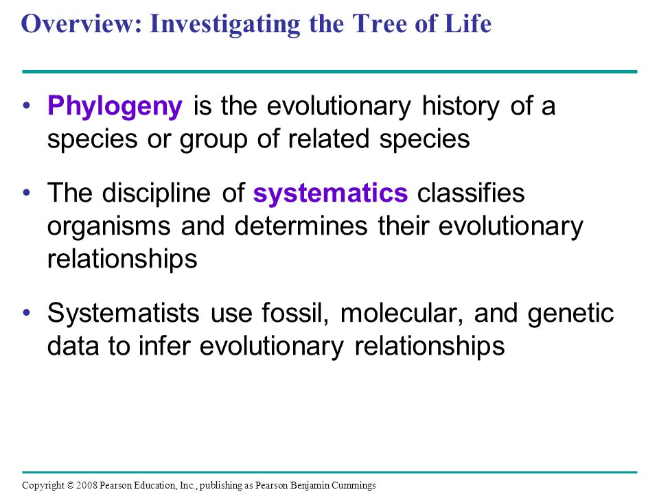 Overview: Investigating the Tree of Life