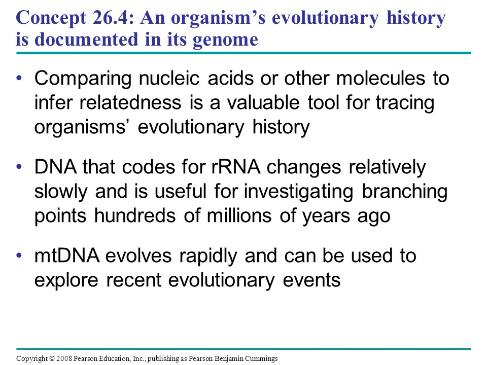Concept 26.4: An organism's evolutionary history is documented in its genome
