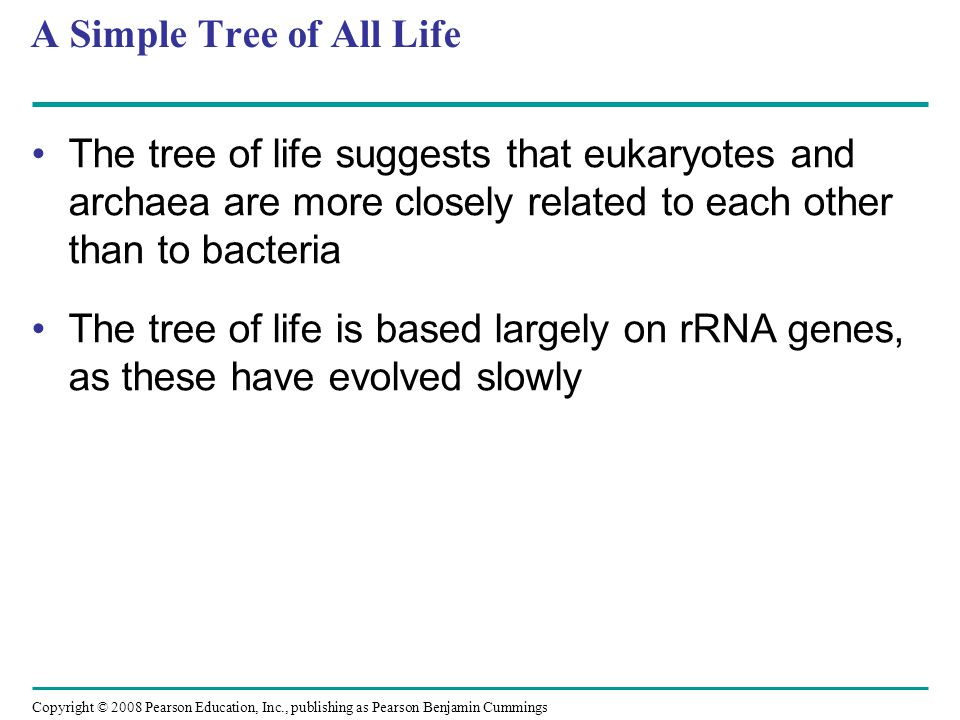 A Simple Tree of All Life