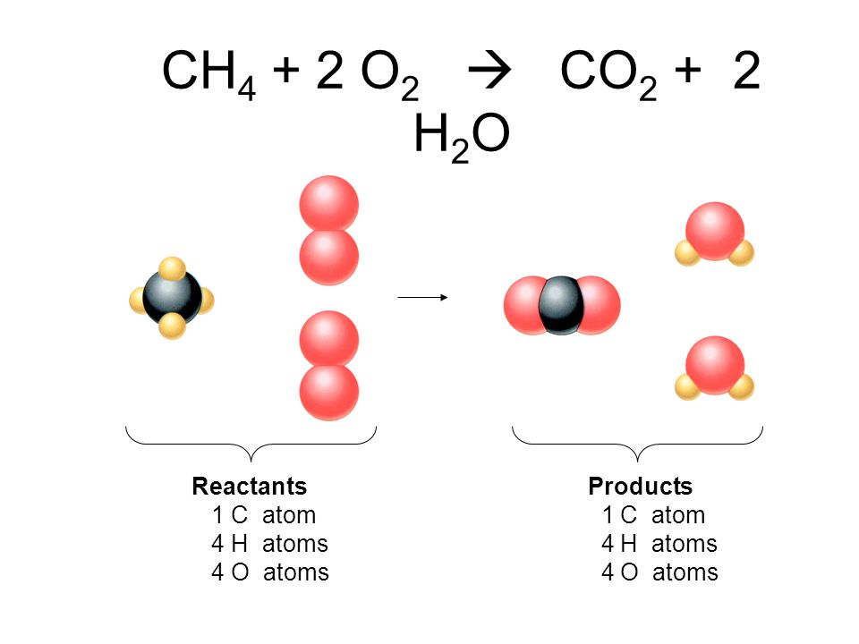CH4 + 2 O2  CO2 + 2 H2O Reactants Products 1 C atom 1 C atom