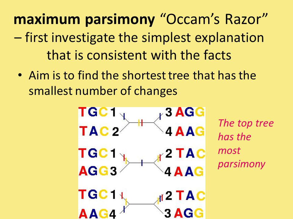 maximum parsimony Occam's Razor – first investigate the simplest explanation that is consistent with the facts