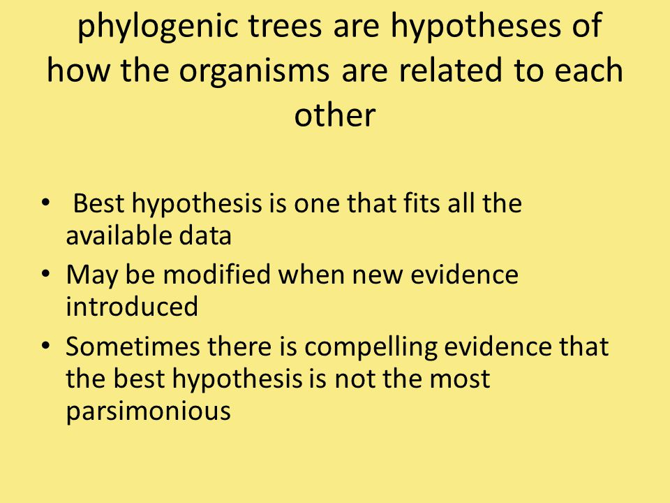 phylogenic trees are hypotheses of how the organisms are related to each other