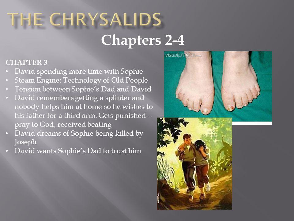 the chrysalids play