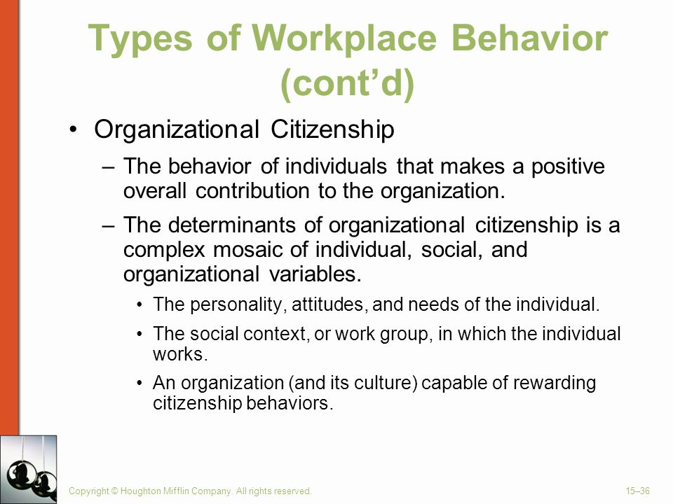 Types of Workplace Behavior (cont'd)