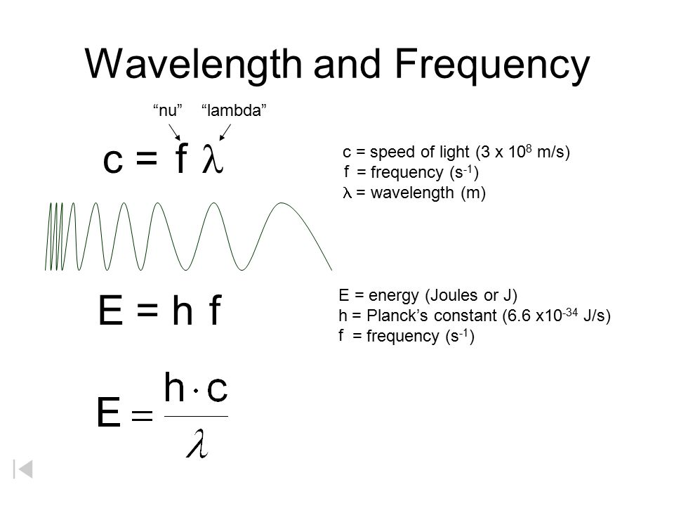 Frequency And Wavelength Ppt Video Online Download