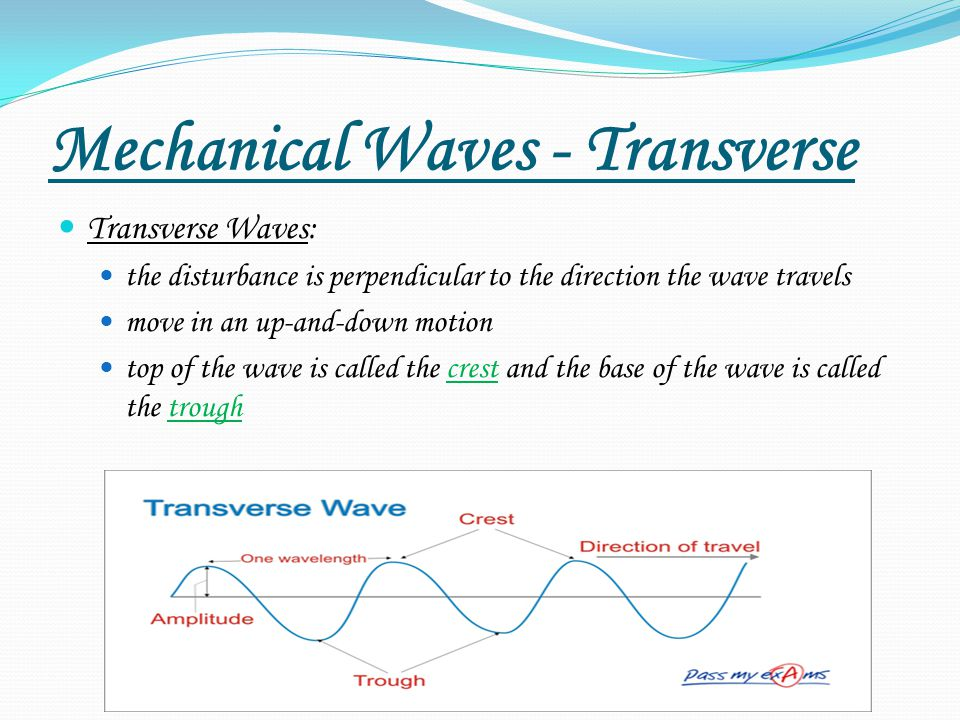 Mechanical Waves - Transverse
