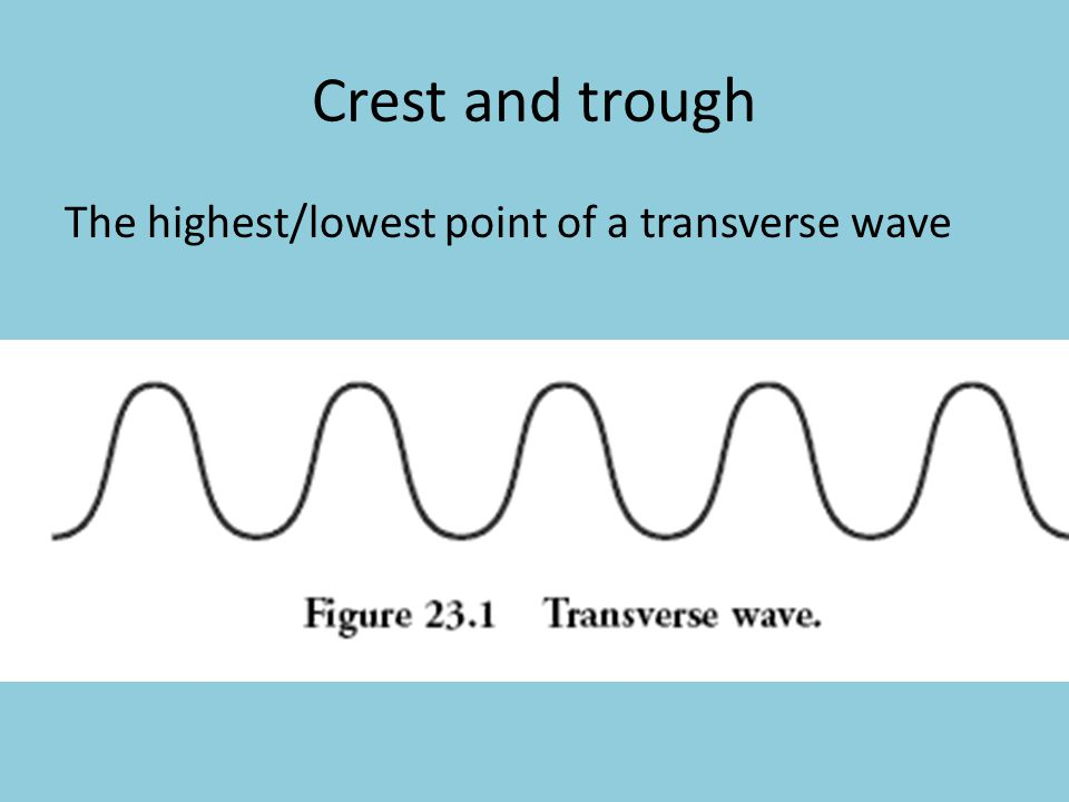 Crest and trough The highest/lowest point of a transverse wave