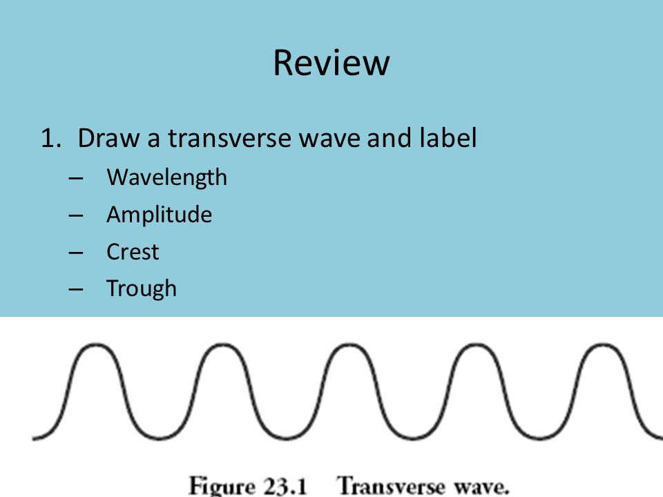 Review Draw a transverse wave and label Wavelength Amplitude Crest