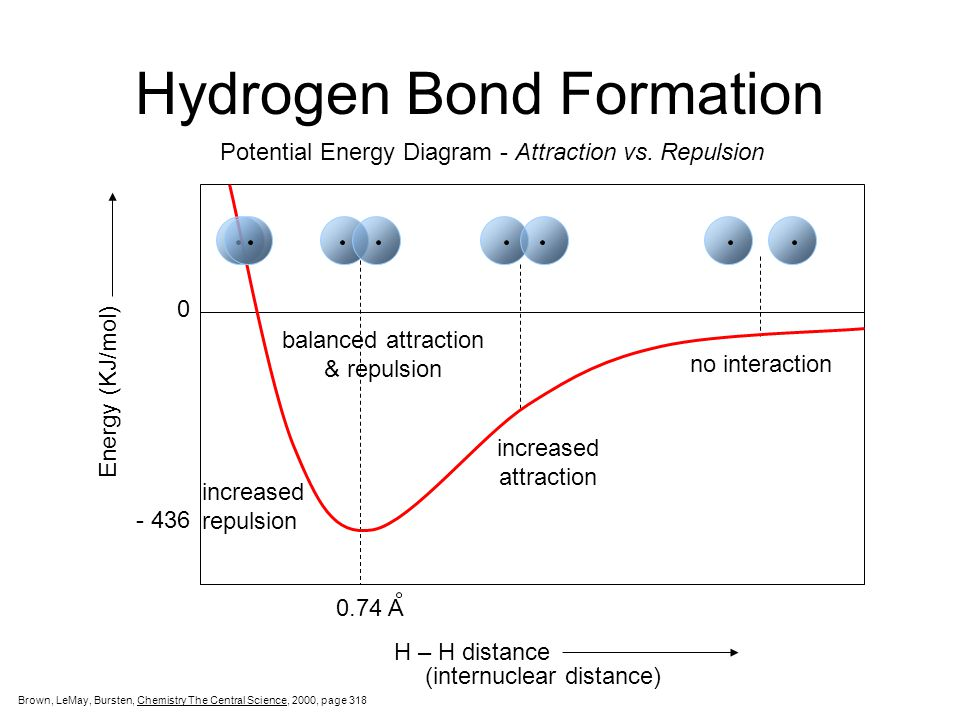 hydrogen bonding essay Standard hydrogen bonding is an intermolecular bond where a hydrogen from one molecule is attached to one of the most electronegative elements oxygen, nitrogen or fluorine of another molecule.