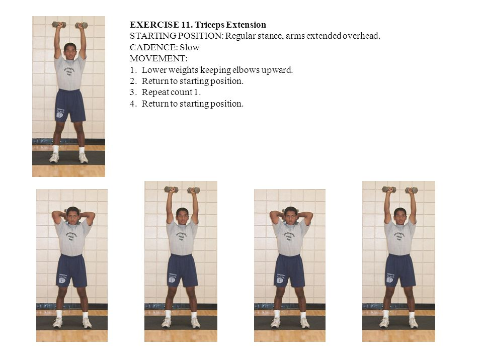 EXERCISE 11. Triceps Extension