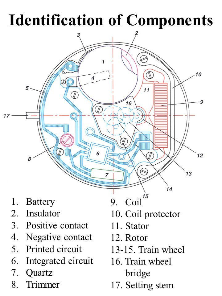 Watch Components Diagram Simple Electronic Circuits