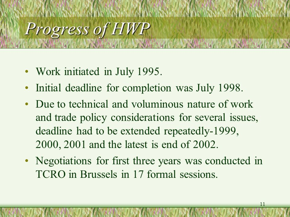 Progress of HWP Work initiated in July 1995.