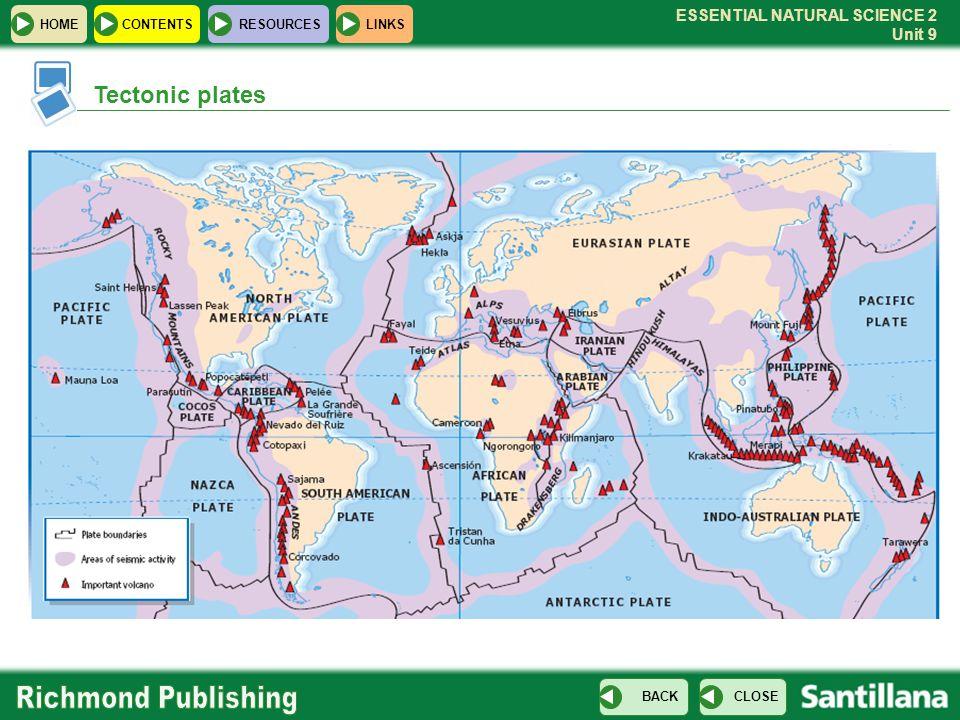 what tectonic plate is mauna loa on