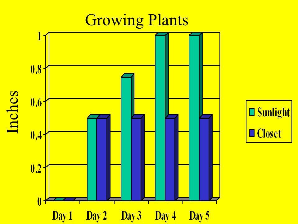 Growing Plants Inches