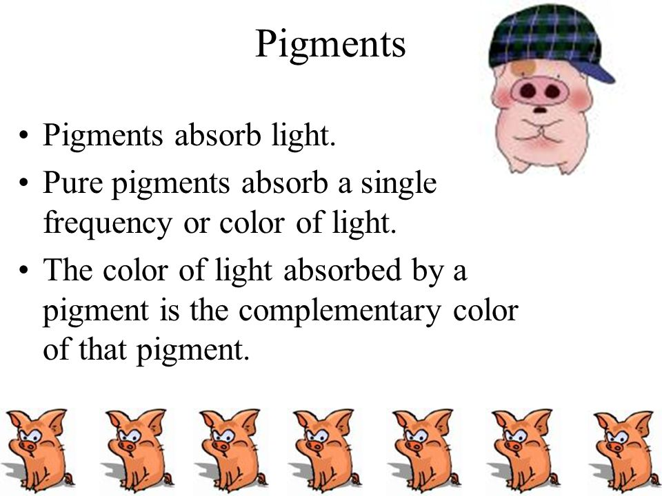Pigments Pigments absorb light.