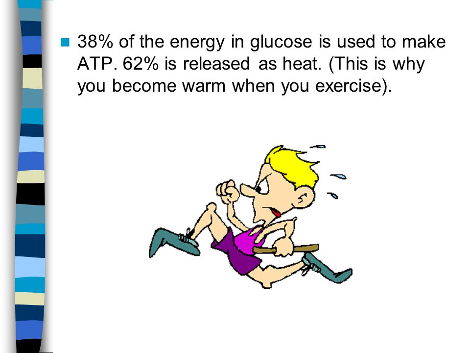 38% of the energy in glucose is used to make ATP
