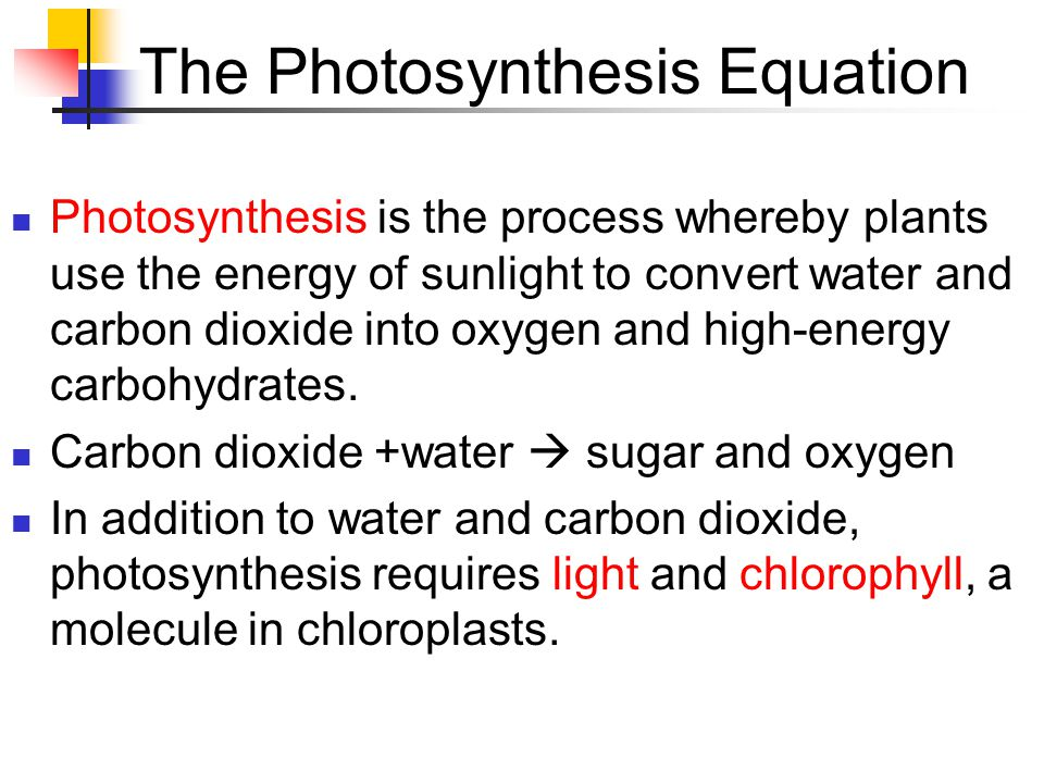 The Photosynthesis Equation