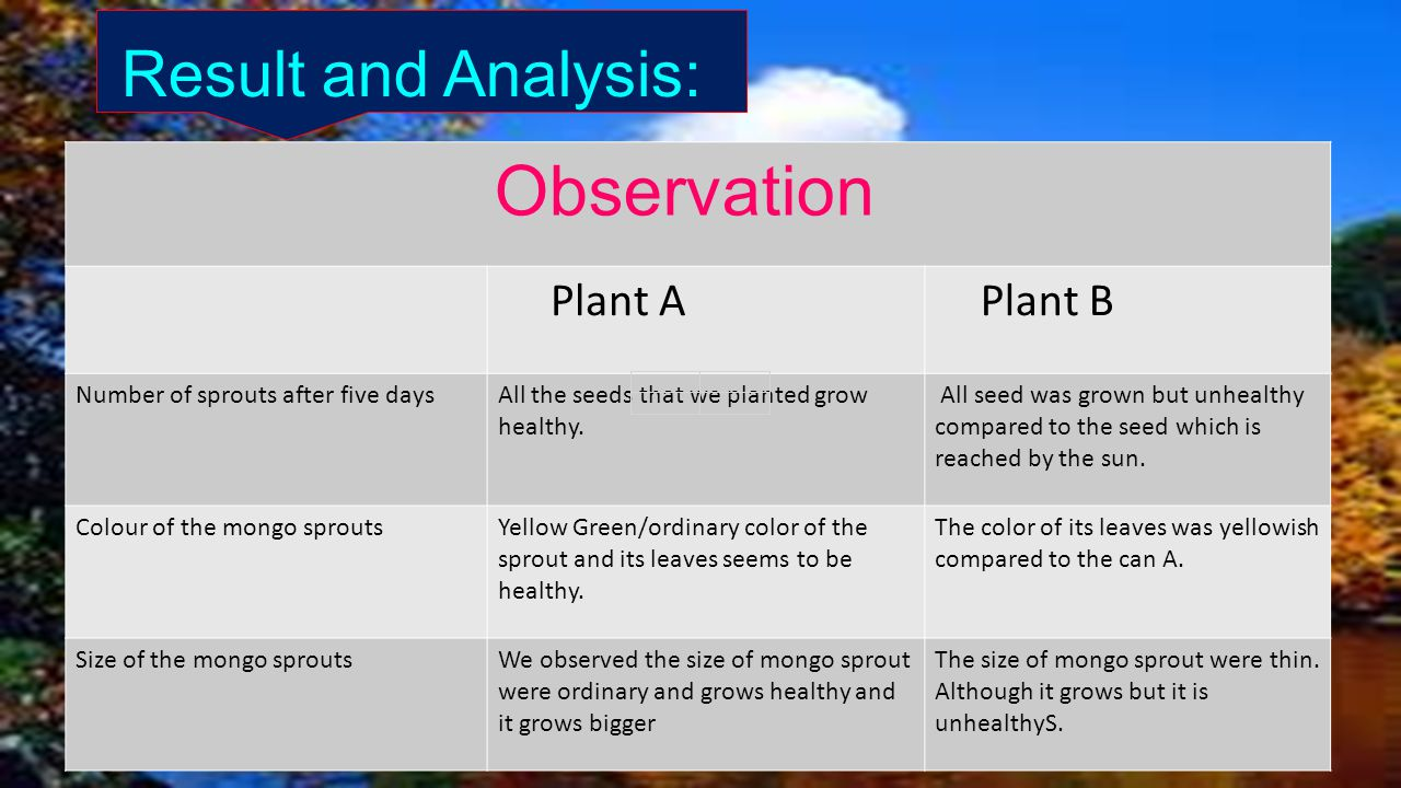Sunlight Factor That Affects Seed Germination Ppt Video Online Sprouting Diagram Images Google Search Might Result And Analysis Observation Plant A B