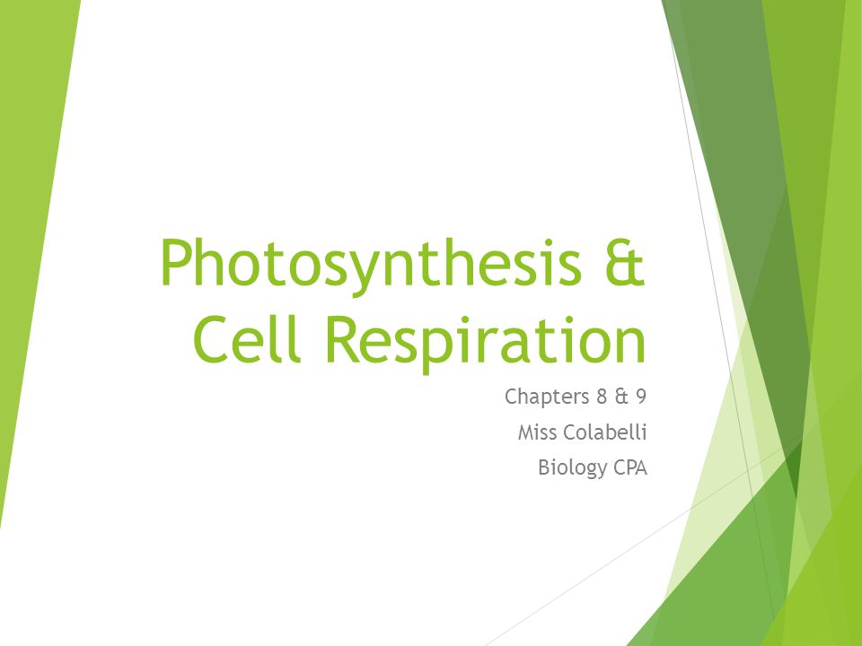 Photosynthesis & Cell Respiration