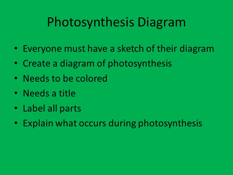 Photosynthesis 71d students know that chloroplasts capture photosynthesis diagram ccuart Choice Image