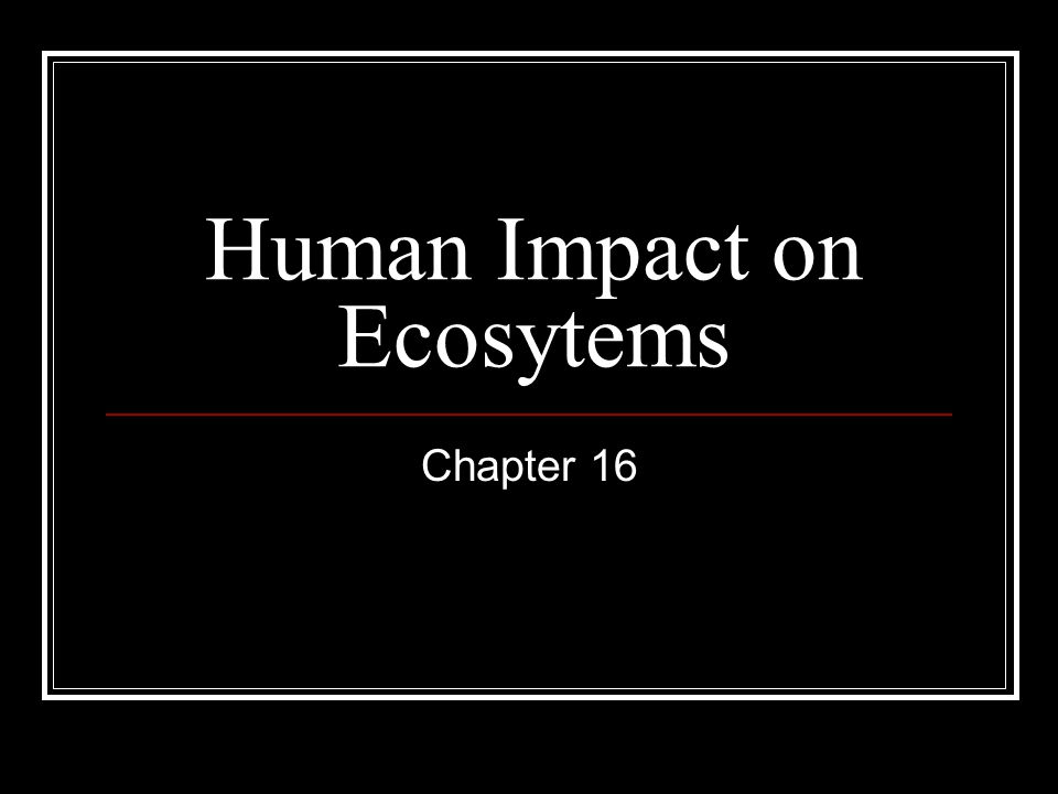 Human Impact on Ecosytems