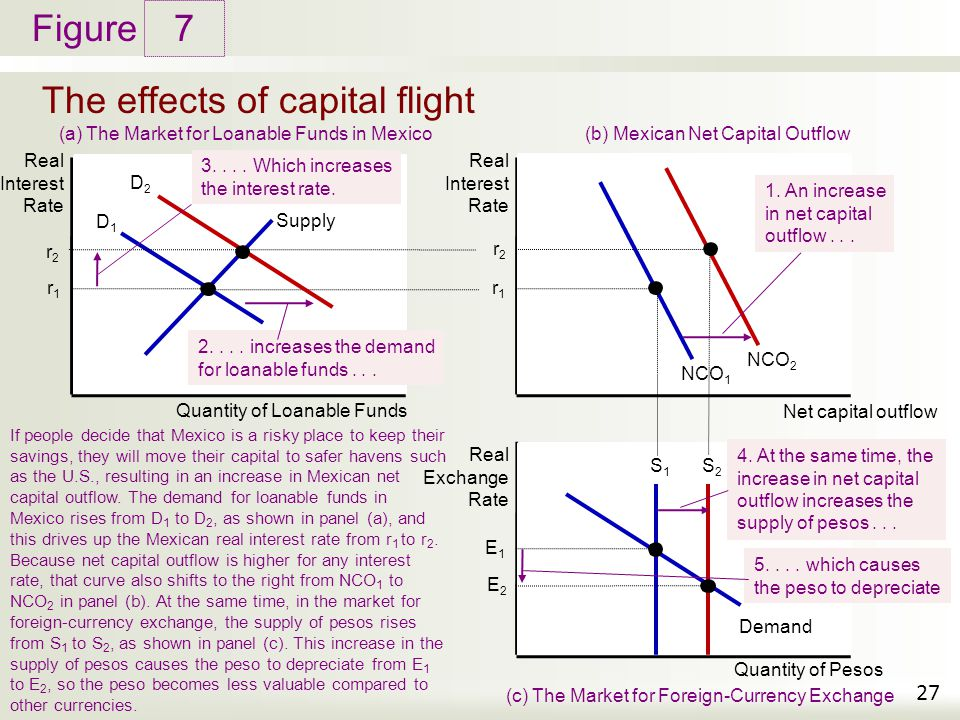 The effects of capital flight