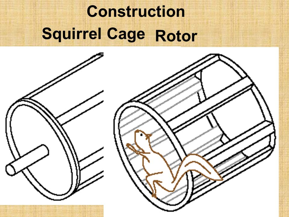 Construction Squirrel Cage Rotor