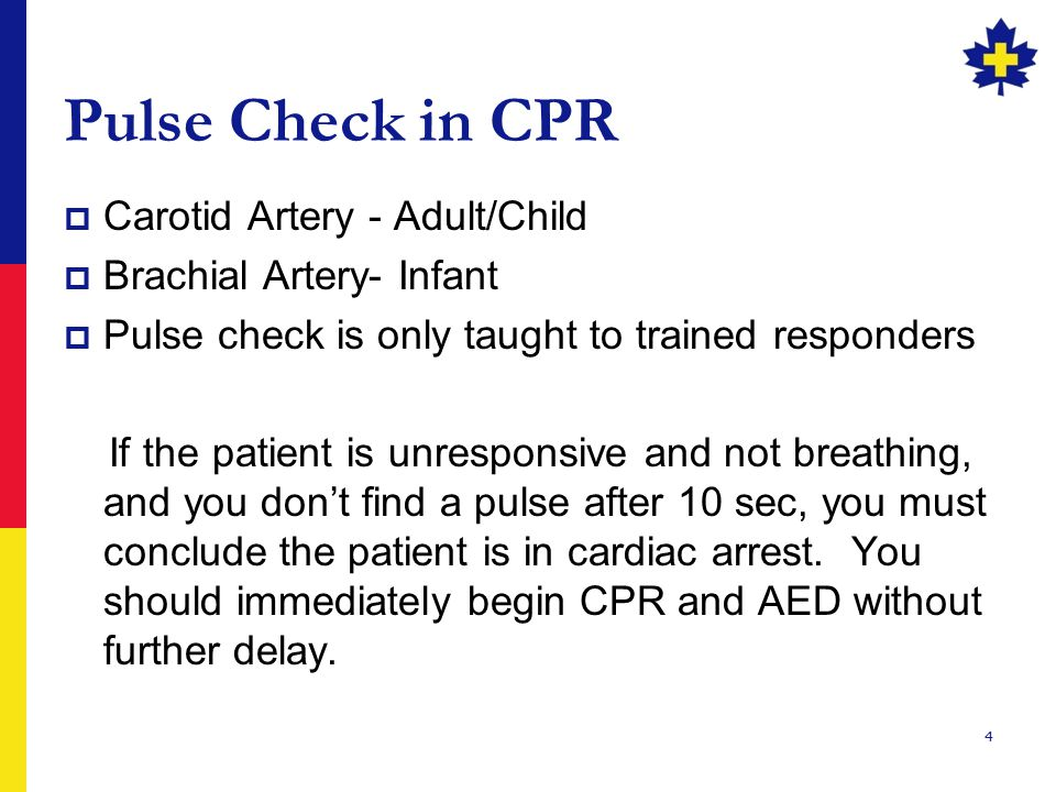 Pulse Check in CPR Carotid Artery - Adult/Child