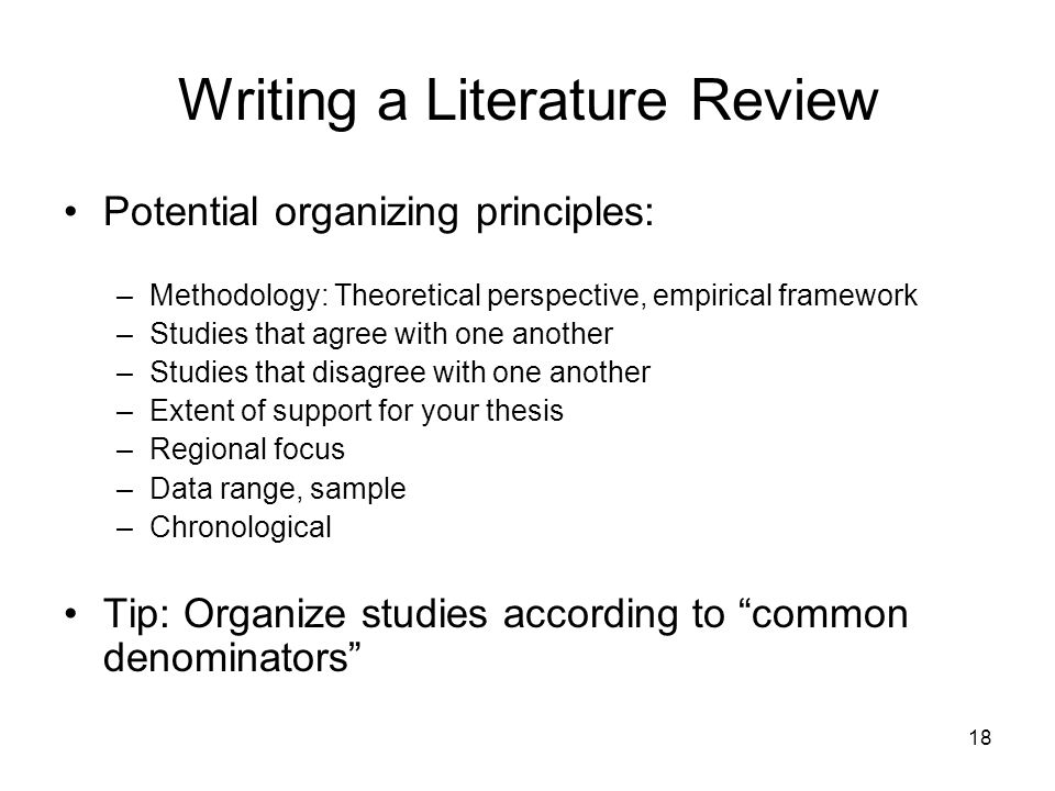 what is a literature review example