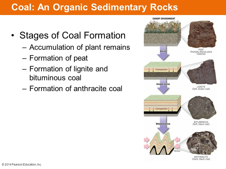 the importance of sedimentary rocks ppt video online