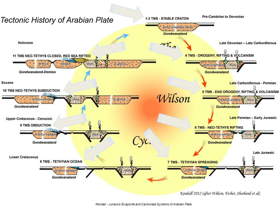diagram of arabian plate res wiring diagrams Arabian Tectonic Plate