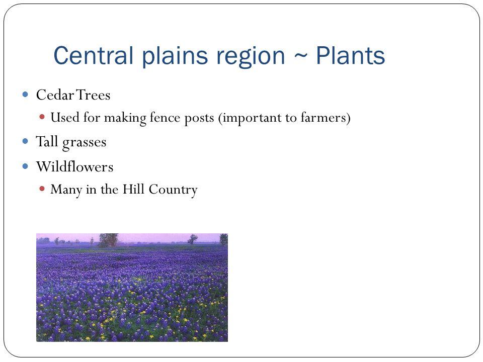 Central Plains Region Location Landforms Important Cities Ppt