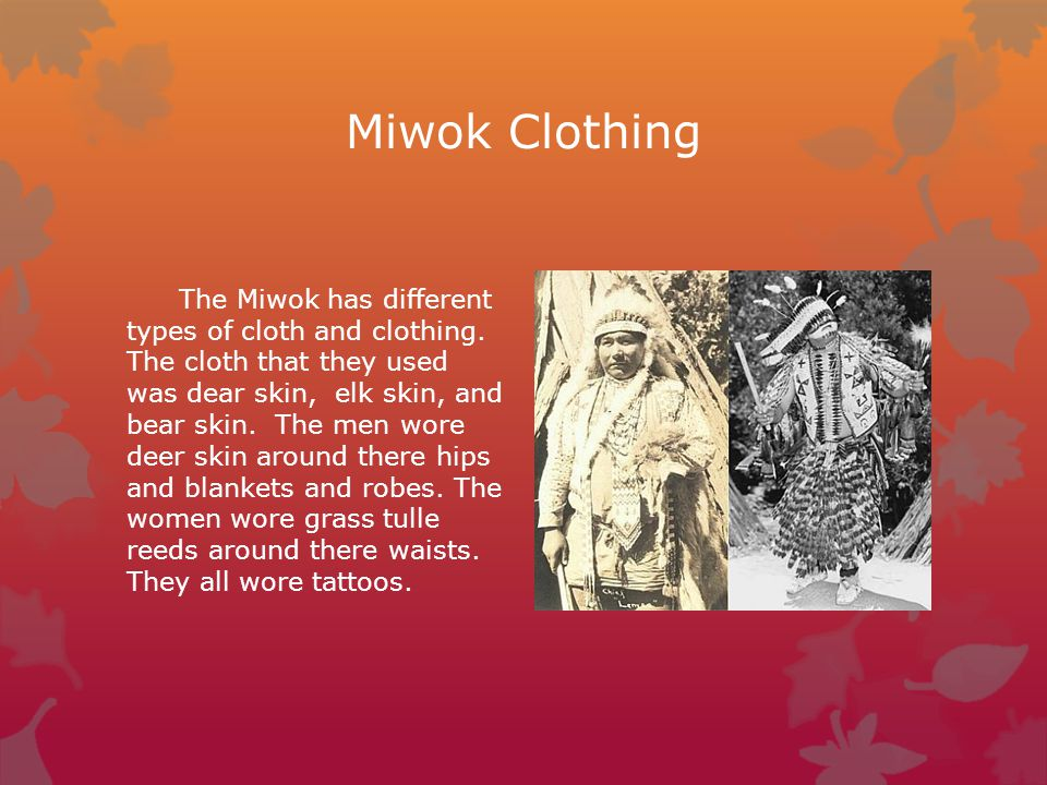 The Miwok A California Native American Tribe Ppt Video Online Download