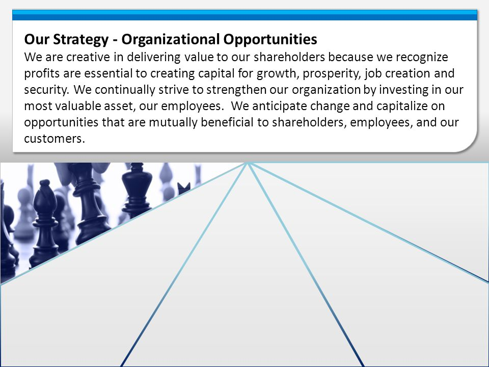 Our Strategy - Organizational Opportunities