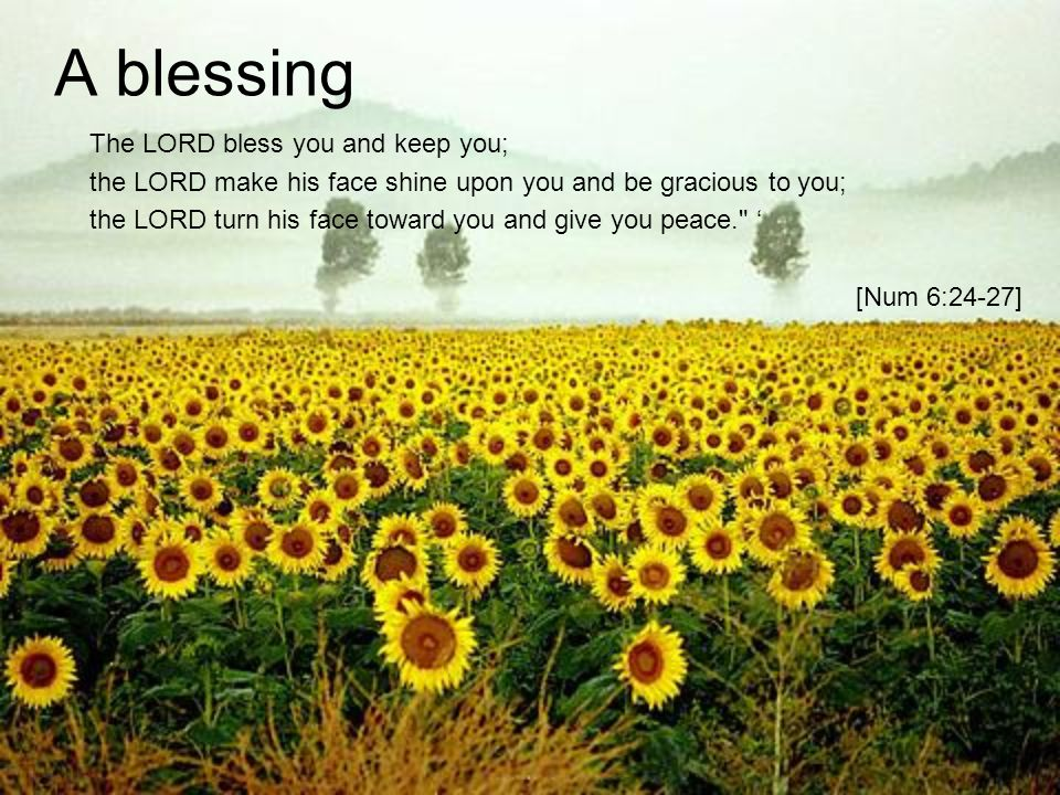 A blessing The LORD bless you and keep you;