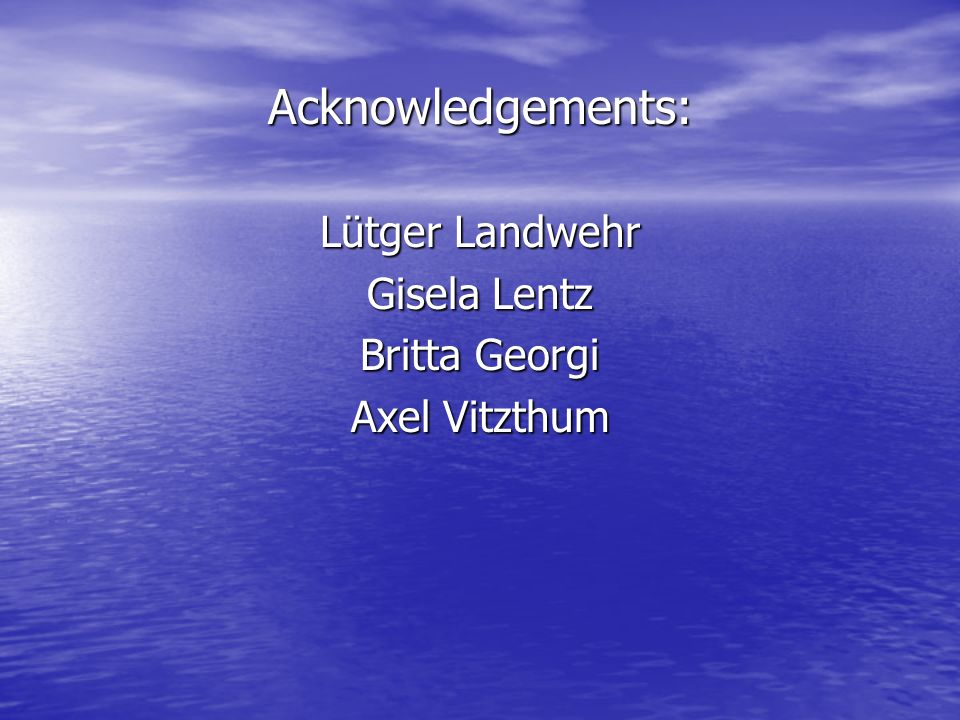 Acknowledgements: Lütger Landwehr Gisela Lentz Britta Georgi